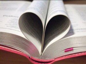 Pink-Bible